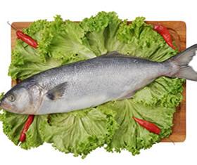 anchova