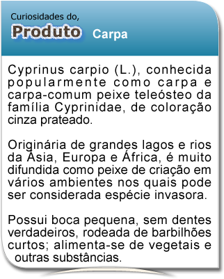 curiosidade_carpa