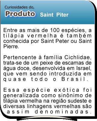 curiosidade_tilapia_st_piter