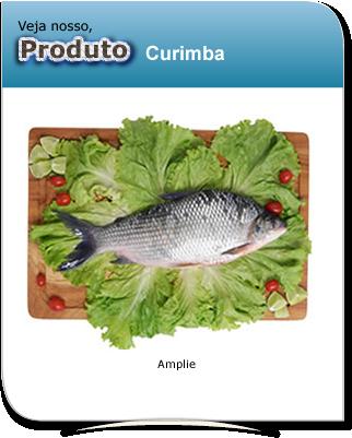 produto_curimba