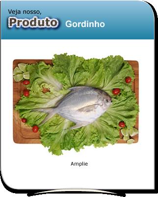 produto_gordinho