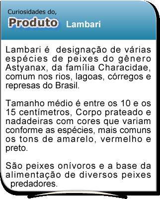 curiosidade_lambari