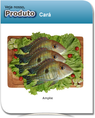 produto_cara