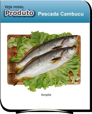 produto_pescada_cambucu