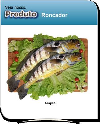 produto_roncador